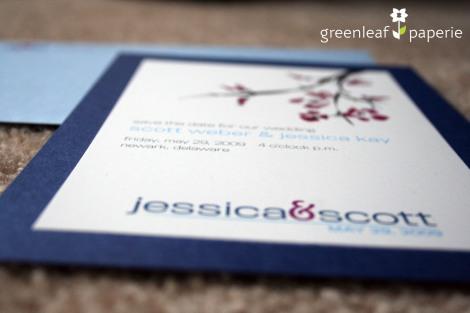 JessScott_STD_2
